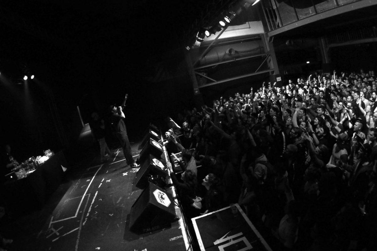 Umse & Crowd (Fotodinge)