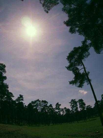 Sunshine / Fotodinge
