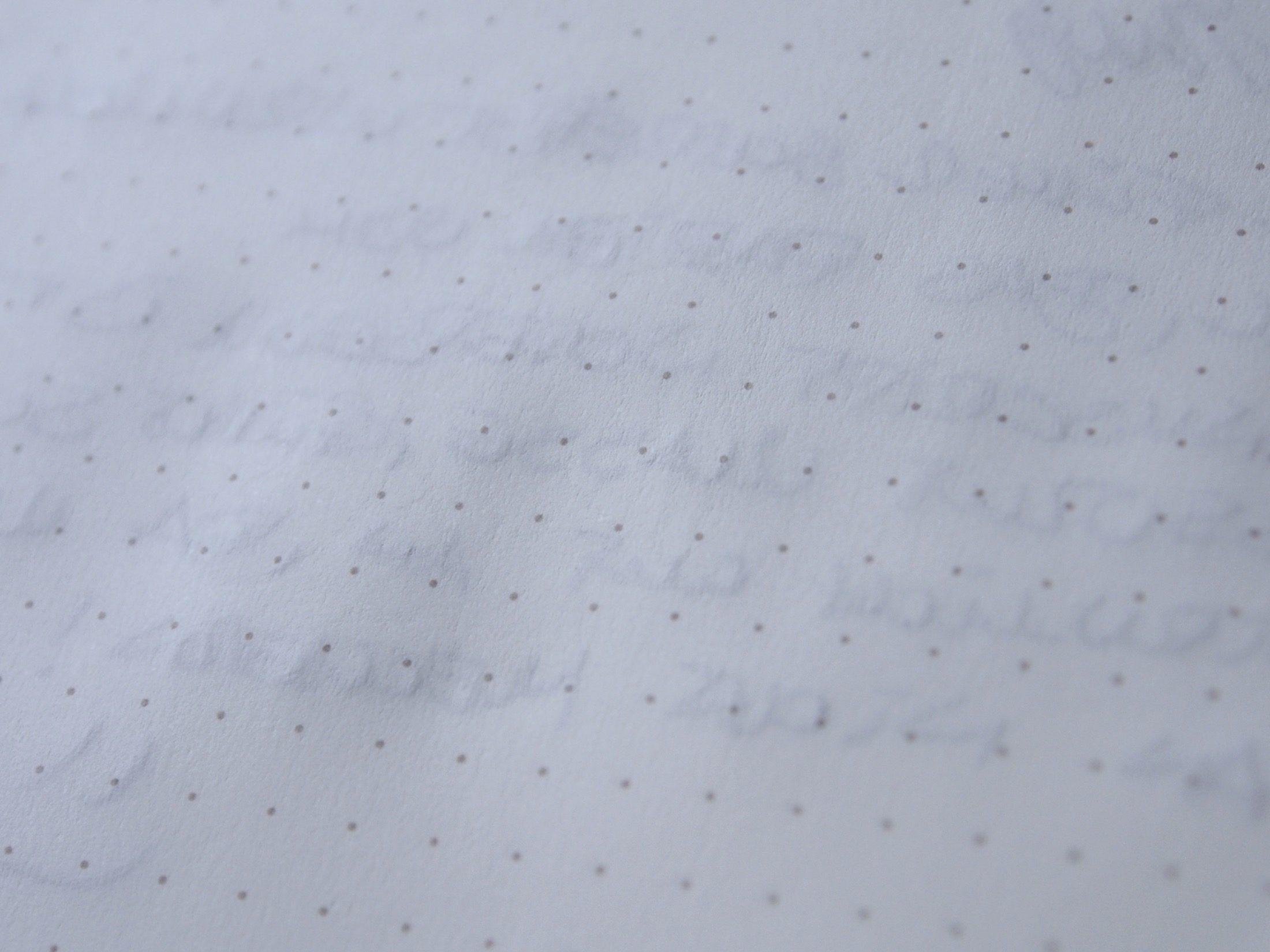 Hahnemühle Papier